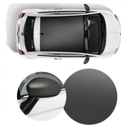 500 Wrapped Side Mirror Covers & Roof Graphics/Decal-Matt Titanium