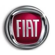 Fiat Adhesive Kit